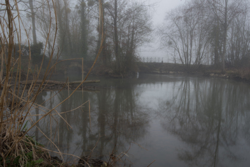 pBER3629-_20_février_2019_-_Oeil_Vendée_