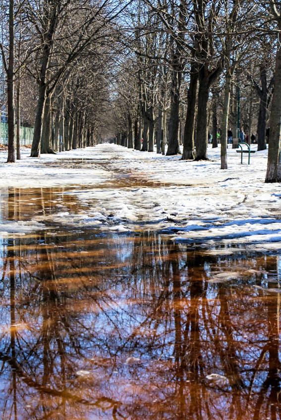 p claude-fonte des neiges-2-180119