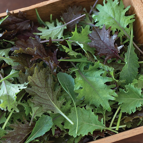 Baby Kale Mix (bagged)