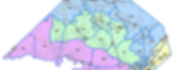 comal county pct map.png