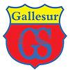 GALLESUR.jpg
