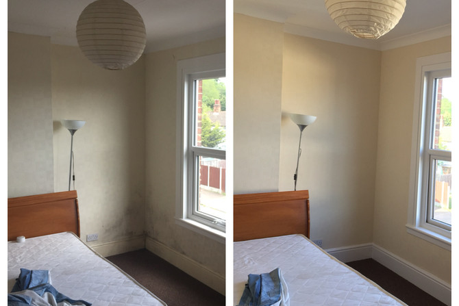 Painting and decorating in Essex Grays
