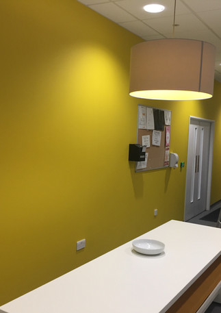 Office painters and decorators