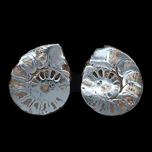 Ammonite with Hematite Matching Halves • 8.6 grams ~ 26x20x8mm