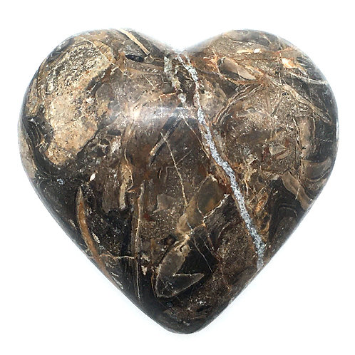 Stromatolite Heart • Peru • 96.8 grams ~ 50x53x29mm