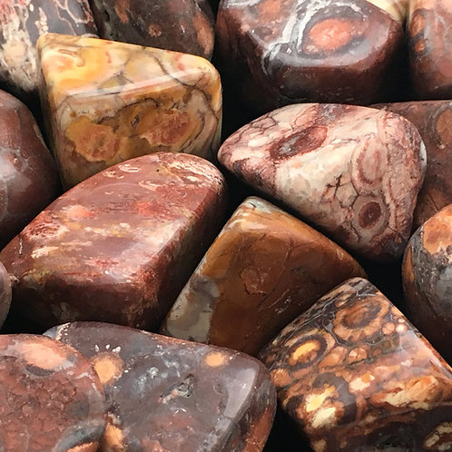 Birds Eye Rhyolite Tumbled • Brazil • Extra-Large