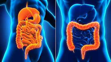 Whats-the-Difference-Between-Crohns-Dise
