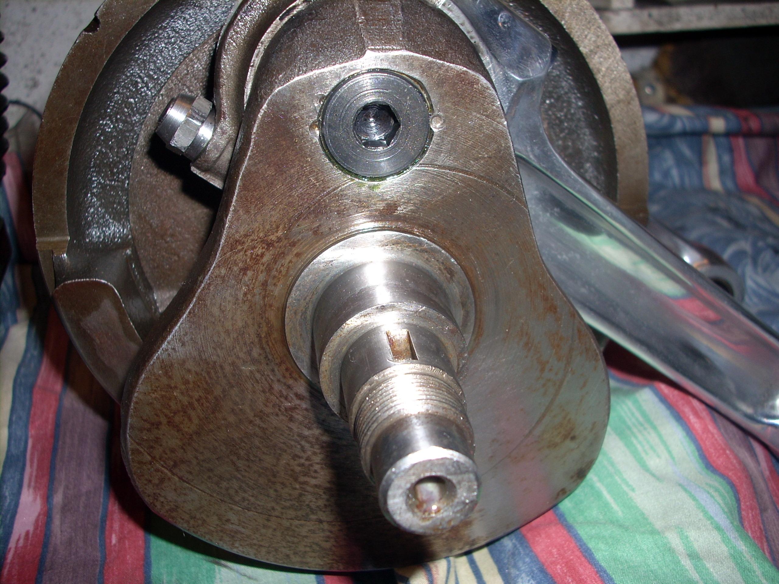 Insex sludge trap plug