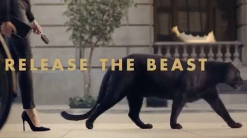 Magnum Release The Beast