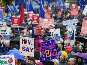 Reacții în lanț după ce regina Elisabeta a II-a a fost de acord să suspende Parlamentul britanic