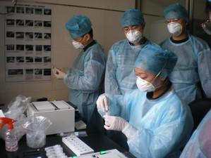 China va coopera doar cu OMS într-o posibilă anchetă privind originea coronavirusului