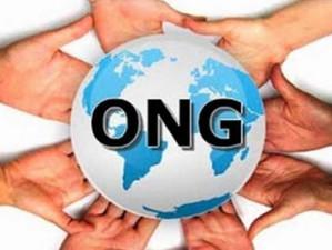 Rușii vor să declare ONG-urile străine care încearcă să influențeze alegerile ca fiind indezirabile