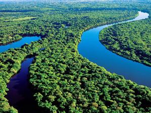 Brazilia a refuzat ajutorul oferit de G7 pentru stingerea incendiilor din pădurea Amazoniană