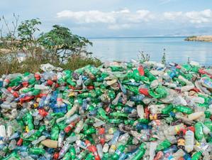 Parlamentul European a votat pentru reducerea poluării cu plastic