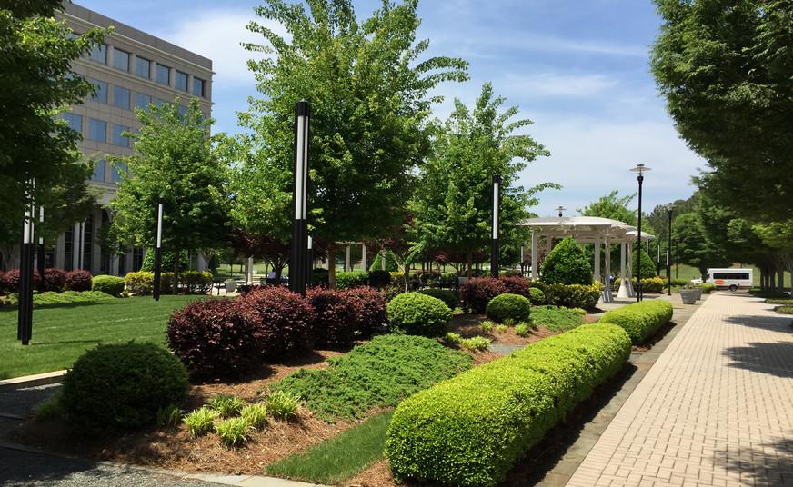 02Glenlake Plaza BEFORE.JPG