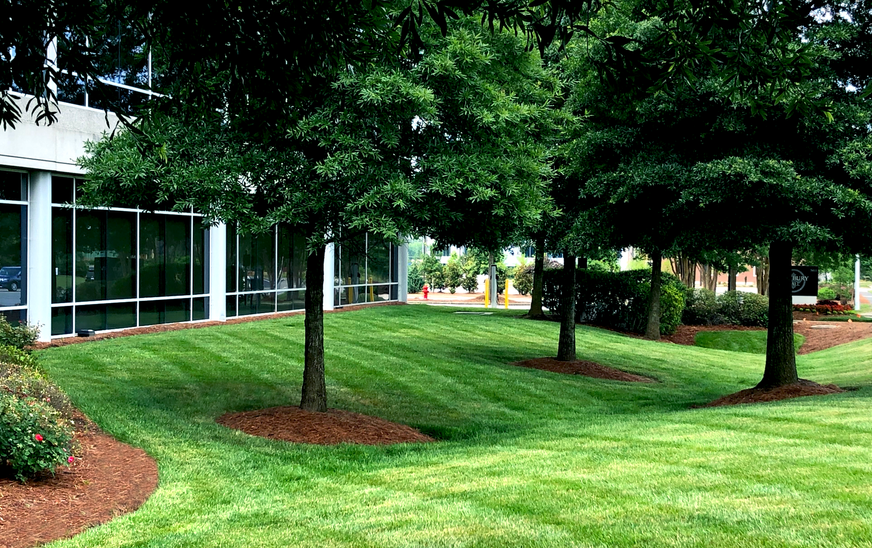 Imperial Center Turf Managent