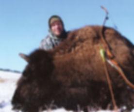bison_f.jpg