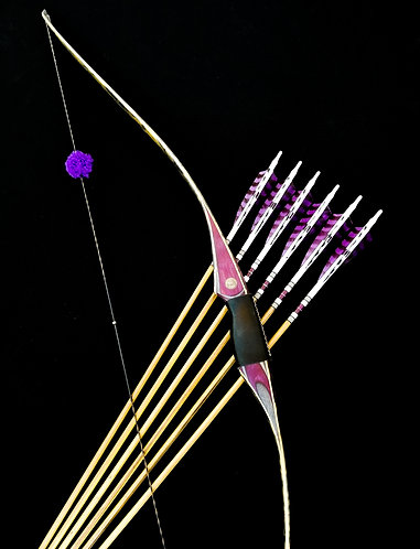 Branstine Signature Series Reflex Deflex Longbow & Arrows