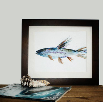 River trout
