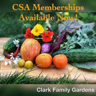 Now Offering ... Clark Family Gardens CSA Memberships!