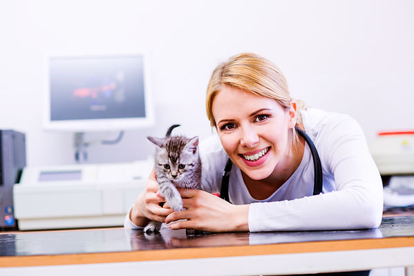 graphicstock-veterinarian-with-stethosco