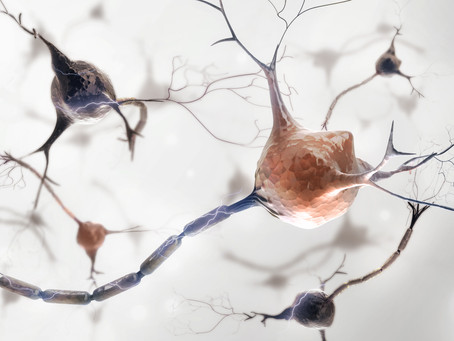 Neurons !!