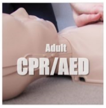 Adult CPR/AED-Tacoma