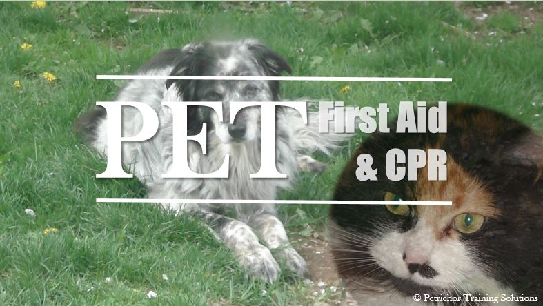 Pet First_Aid