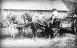Manure Wagon