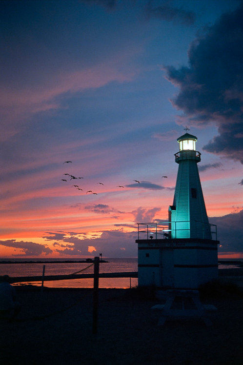 THE LIGHT HOUSE