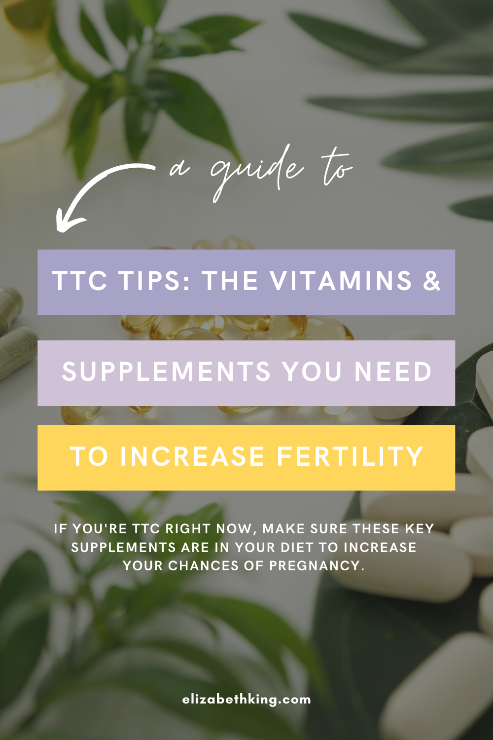 TTC Tips: The Vitamins & Supplements You Need to Increase Fertility | ElizabethKing.com