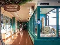 UMN Gabbert Raptor Center Atrium Mews Remodel