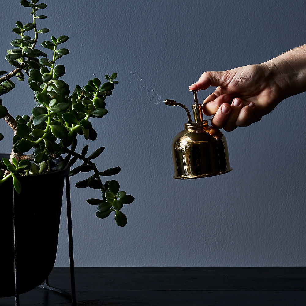 brass mister misting water on green plant