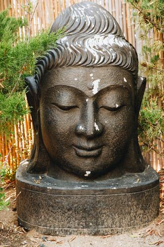 Royal Way Zen Garden
