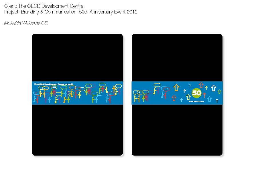 OECDproject 4.jpg