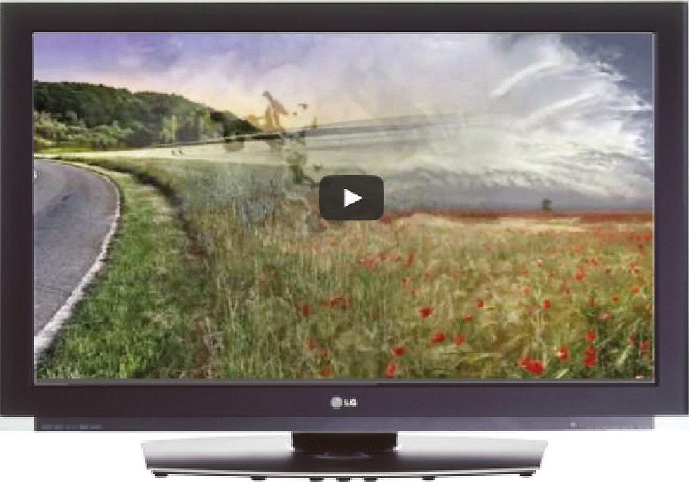 MO-video-LCD.jpg