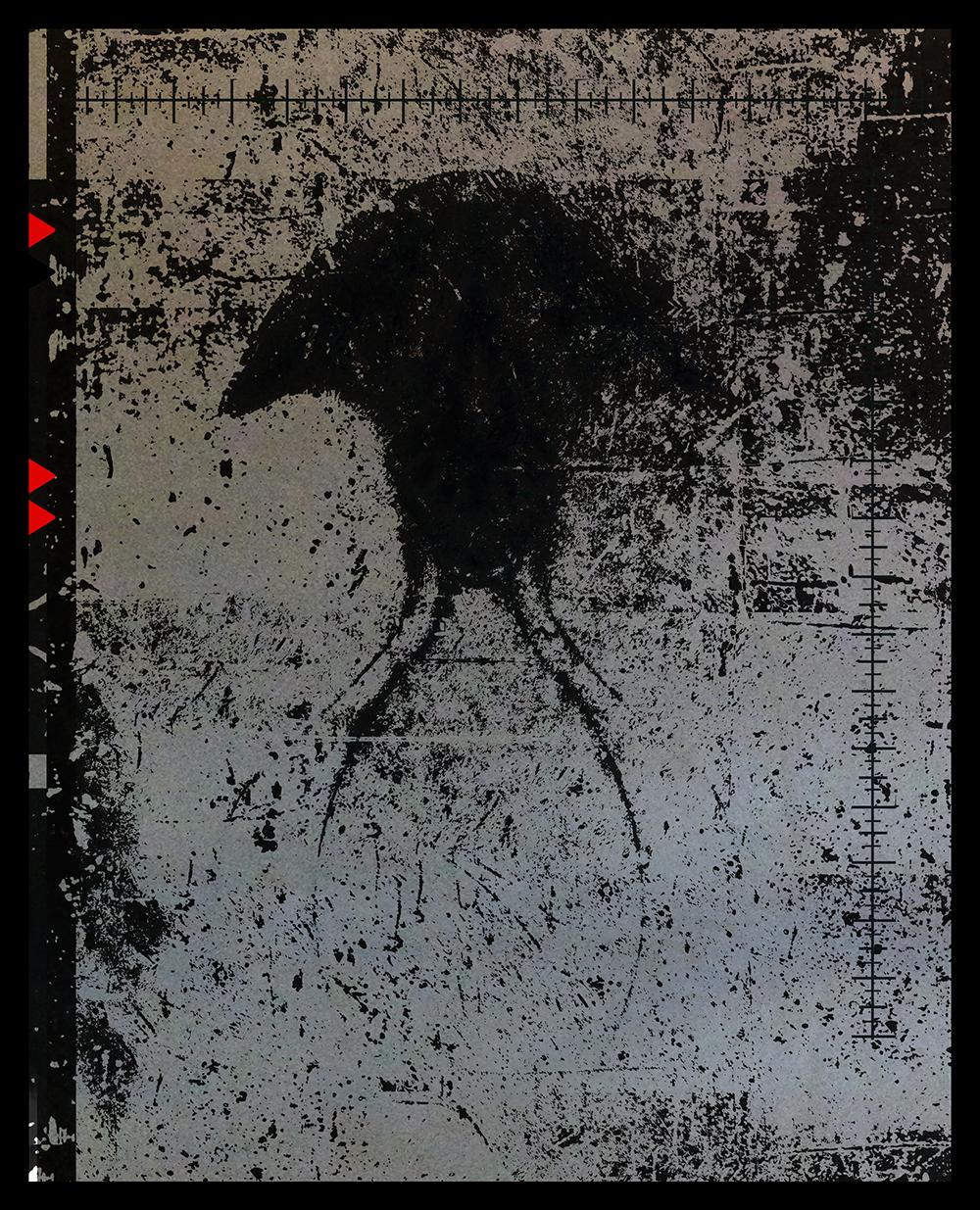 CRINI-silhouettes-9.png