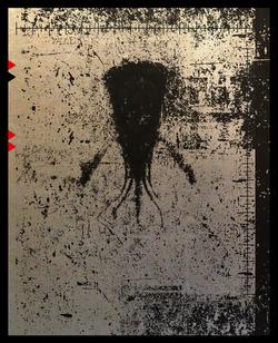 CRINI-silhouettes-13.png
