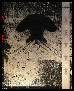 CRINI-silhouettes-10.png