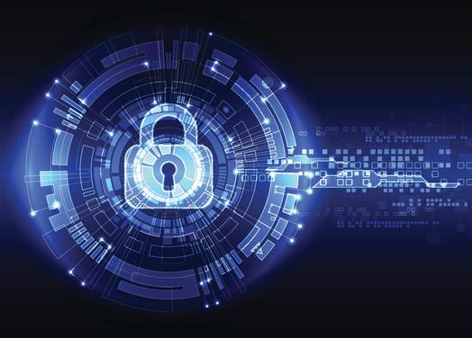 Dedication to Information Security