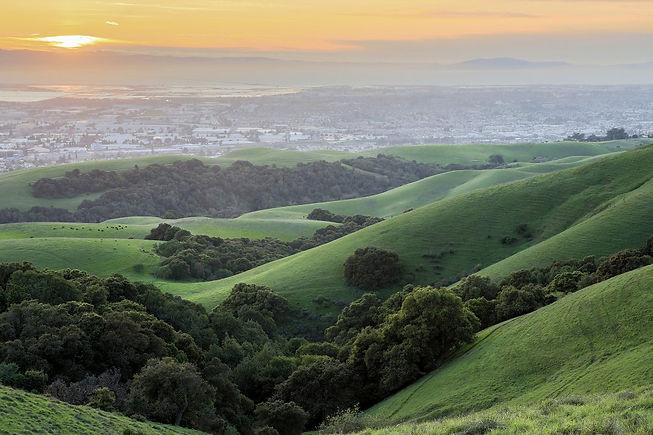 california-proposition-68_h.jpg