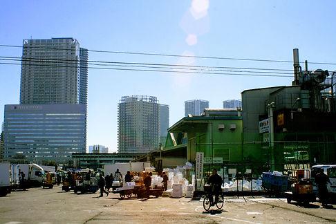 tsukiji fish market hustle and bustle