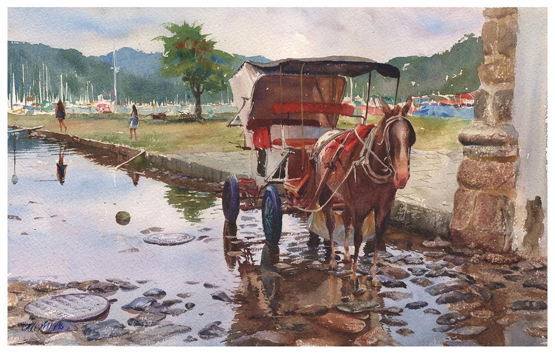 Carroça na Chuva | Paraty