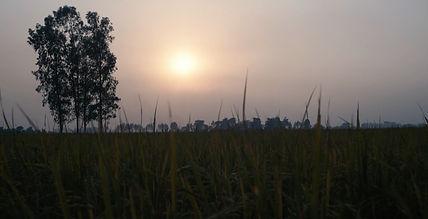 Amritsar_edited_edited.jpg