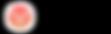 Vizer Logo.png