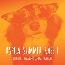 RSPCA_Summer raffle _Instagram post.jpg