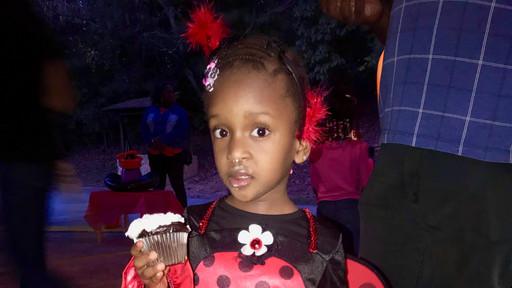 Fun fact: Ladybugs love cupcakes!