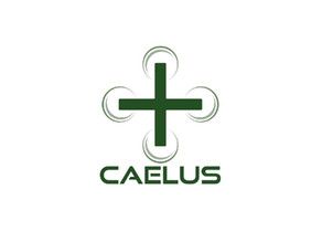 Onboard CAELUS, the Future Flight Consortium to develop Scotland Medical Drone Delivery Network