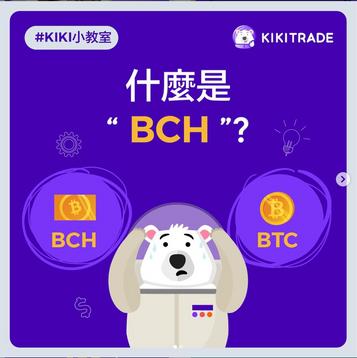 """什麼是""""BCH""""?"""