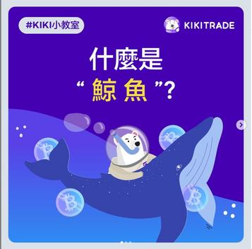 """什麼是""""鯨魚""""?"""